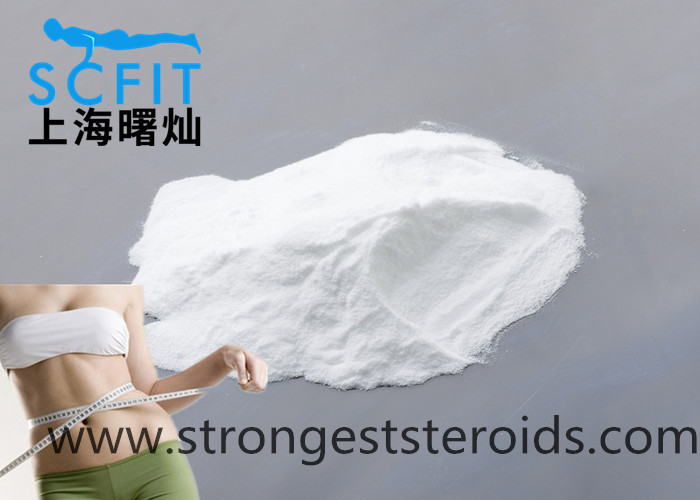 Slimming Bulking Cycle Steroids Weight Loss L-Carnitine dosage CAS 541-15-1